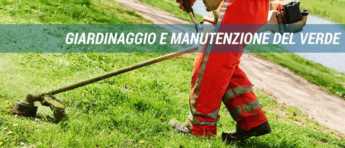 PMS Giardinaggio Manutenzione del verde Civitavecchia Roma Viterbo